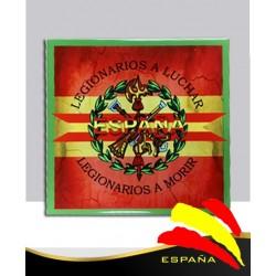 Cerámica Legión-Bandera 20x20 cm.
