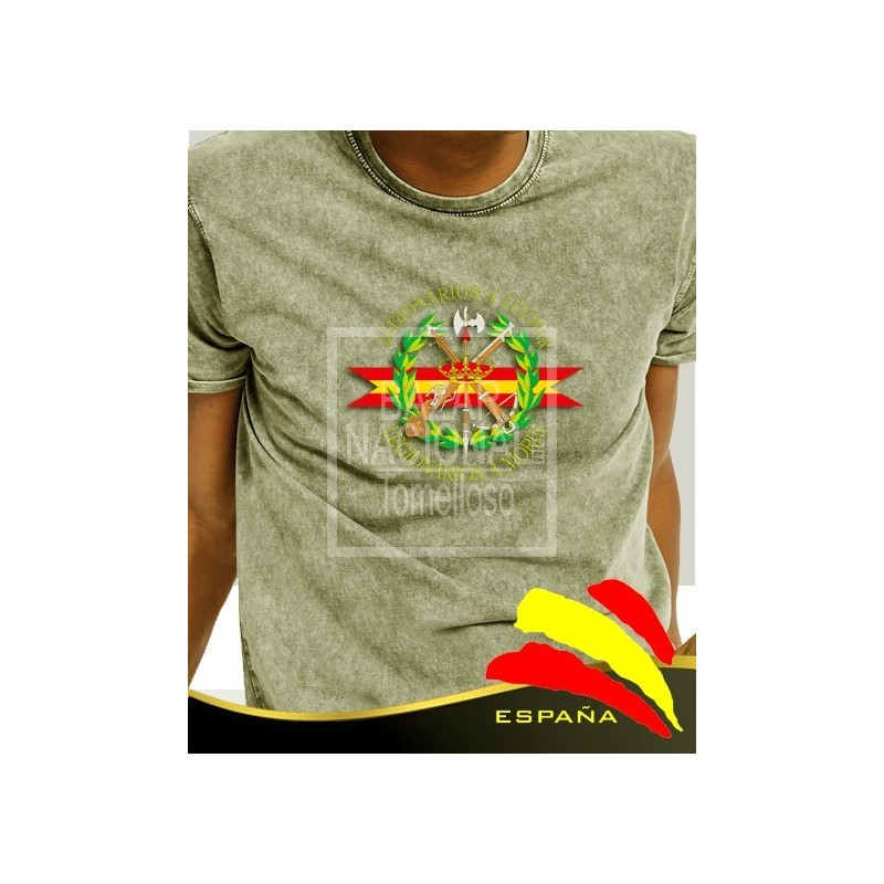 Camiseta degradada verde Legión Central